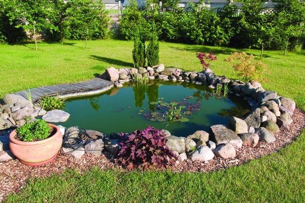 Quelle forme de bassin choisir ?