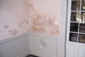 Comment éviter les moisissures sur les murs ?
